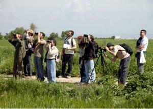 Sortida Ornitològica Secans Belianes-Preixana