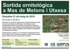 Sortida ornitològica als secans de Mas de Melons